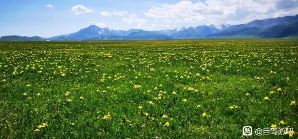 6月最美新疆欢迎来自驾旅行-1.jpg