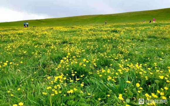 6月最美新疆欢迎来自驾旅行-6.jpg