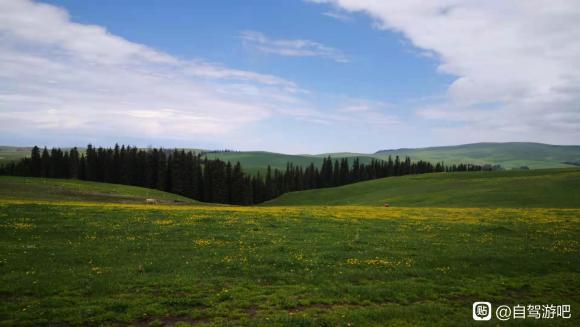 6月最美新疆欢迎来自驾旅行-7.jpg